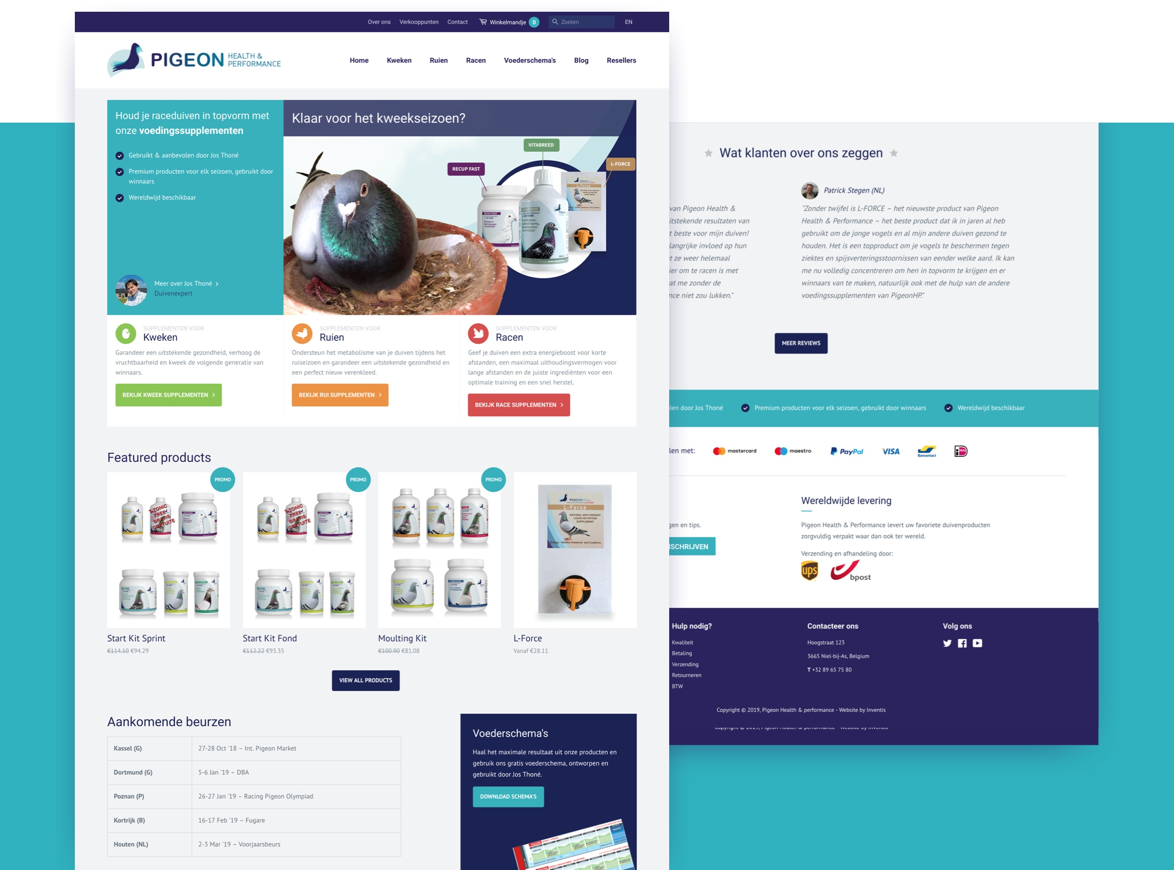 Filling image about Pigeon website