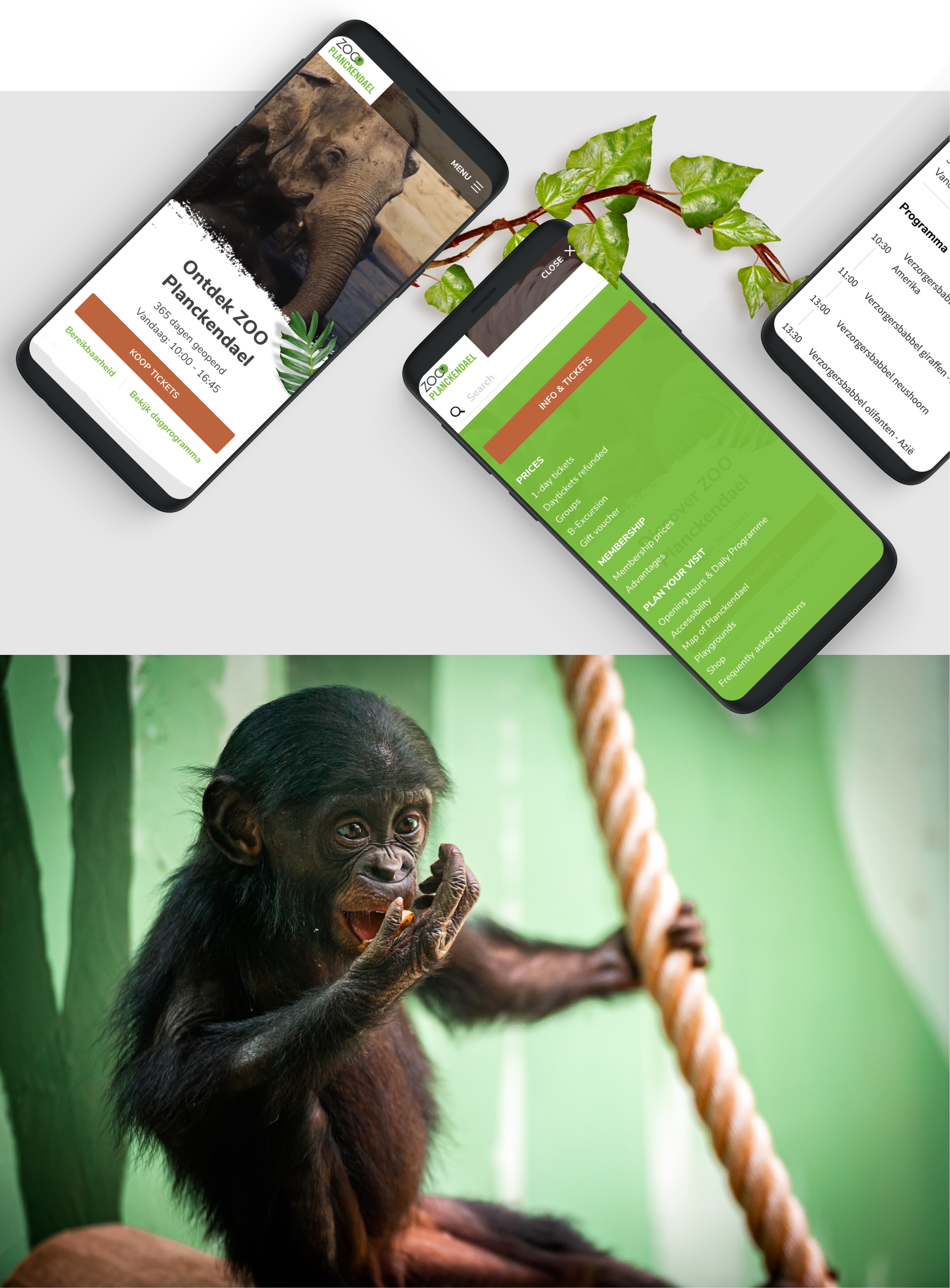 Filling image about ZOO Planckendael Mobile